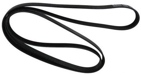 SSR Serpentine Belt 05 06